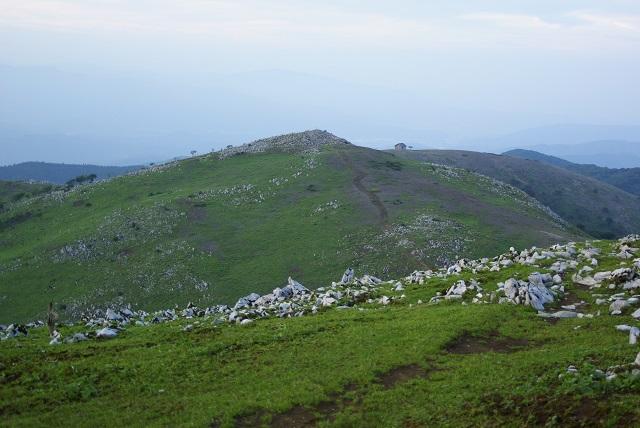 頂上付近の景色