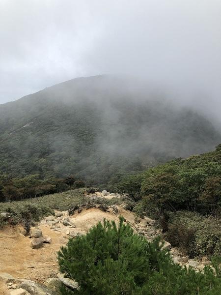 下山途中の風景