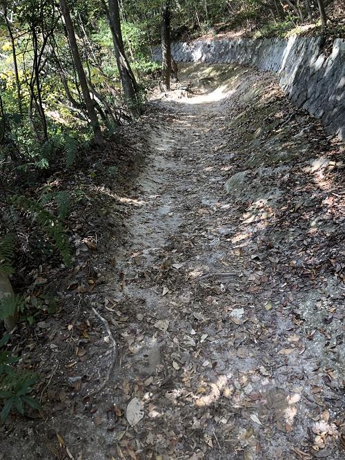猿投山の平坦な道