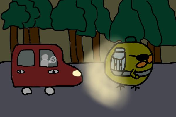 1台の車がひよこSEを発見