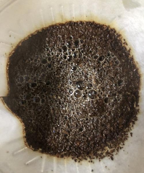 ドミニカコーヒーの蒸らし